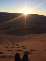 opnieuw-beginnen-woestijn