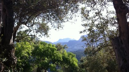Agroturismo Muleta de Ca S'hereu uitzicht Port de Soller, Mallorca