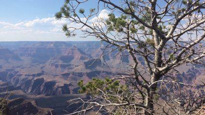Grand Canyon National Park, Amerika