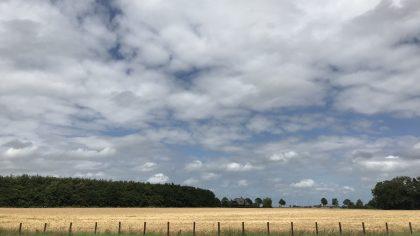 Back to my roots: een ode aan het Groningse platteland