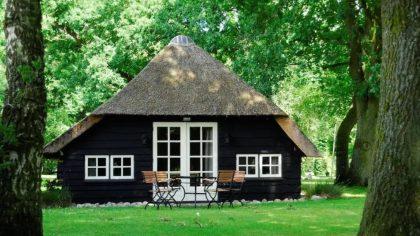 Boshuisje met rieten dak Vierhouten