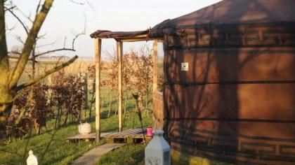 Yurt, Wetsinge Groningen