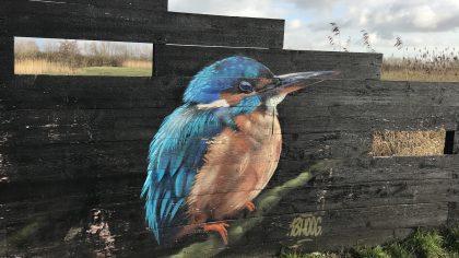 Klompenpad Stoutenburgerpad vogels spotten