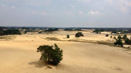 Verrassend mooie plekken en natuurgebieden in Nederland: Kootwijkerzand, Kootwijk