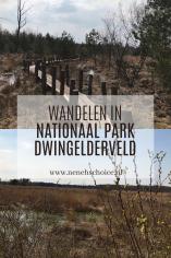 Wandelen in Nationaal Park Dwingelderveld