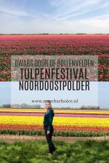 tulpenfestival Noordoostpolder Flevoland