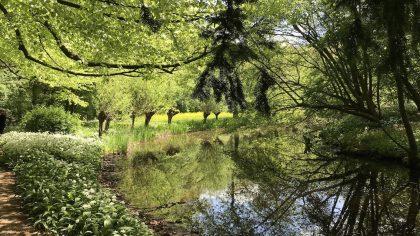 Amsterdamse Bos, Amsterdam