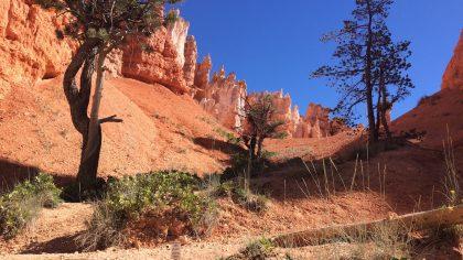 Bryce Canyon Queens Garden Trail, Utah