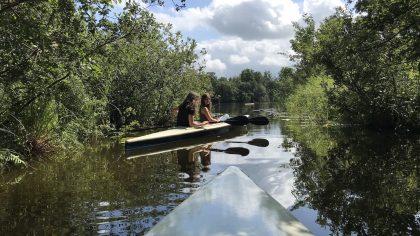 kanoen Loosdrechtse plassen